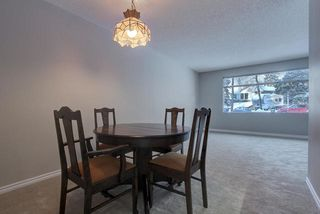 Photo 8: 4 GREYSTONE Place: St. Albert House for sale : MLS®# E4196065