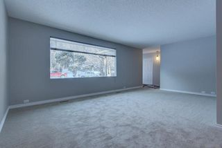 Photo 6: 4 GREYSTONE Place: St. Albert House for sale : MLS®# E4196065