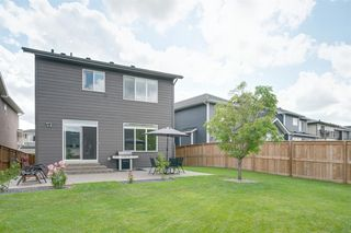 Photo 39: 11 CRANBROOK Lane SE in Calgary: Cranston Detached for sale : MLS®# A1019546