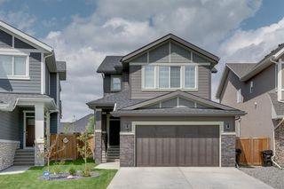 Photo 42: 11 CRANBROOK Lane SE in Calgary: Cranston Detached for sale : MLS®# A1019546
