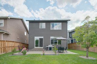 Photo 40: 11 CRANBROOK Lane SE in Calgary: Cranston Detached for sale : MLS®# A1019546
