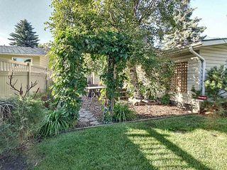 Photo 25: 3630 109 Street in Edmonton: Zone 16 House for sale : MLS®# E4208661