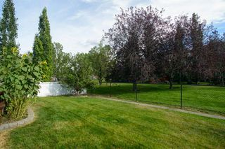 Photo 47: 9 DOUGLAS RIDGE Close SE in Calgary: Douglasdale/Glen Detached for sale : MLS®# A1030790