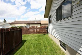 Photo 33: 27 Abalone Way NE in Calgary: Abbeydale House for sale : MLS®# C3572378