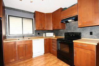 Photo 15: 27 Abalone Way NE in Calgary: Abbeydale House for sale : MLS®# C3572378