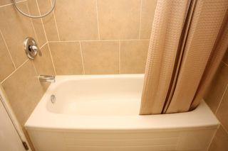 Photo 27: 27 Abalone Way NE in Calgary: Abbeydale House for sale : MLS®# C3572378