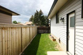 Photo 36: 27 Abalone Way NE in Calgary: Abbeydale House for sale : MLS®# C3572378