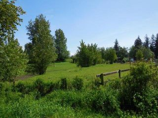Photo 2: 26254 64 Avenue in Langley: County Line Glen Valley House for sale : MLS®# F1411827
