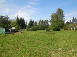 Photo 8: 26254 64 Avenue in Langley: County Line Glen Valley House for sale : MLS®# F1411827