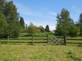 Photo 3: 26254 64 Avenue in Langley: County Line Glen Valley House for sale : MLS®# F1411827