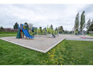 Photo 24: 5064 208th Street in Langley: Langley City House for sale : MLS®# R2058495