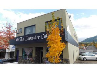 Photo 1: 140 Hudson Avenue in Salmon Arm: DOWNTOWN CORE Industrial for sale : MLS®# 10125590