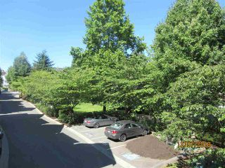 Photo 18: 34 20176 68 AVENUE in Langley: Willoughby Heights Townhouse for sale : MLS®# R2289319