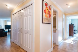 Photo 5: 236 7451 MOFFATT Road in Richmond: Brighouse South Condo for sale : MLS®# R2420970