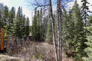 Photo 15: 1504 AVELING COALMINE Road in Smithers: Smithers - Rural House for sale (Smithers And Area (Zone 54))  : MLS®# R2452977