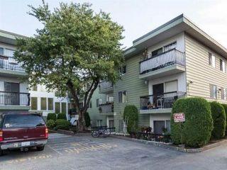 """Main Photo: 386C 8635 120 Street in Delta: Annieville Condo for sale in """"DELTA CEDARS"""" (N. Delta)  : MLS®# R2455776"""