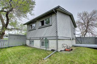 Photo 34: 49 12 Templewood Drive NE in Calgary: Temple Row/Townhouse for sale : MLS®# C4299149