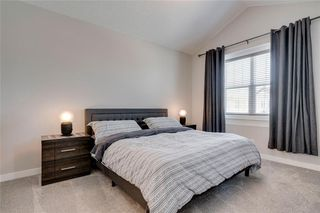 Photo 19: 17 CRANBROOK Close SE in Calgary: Cranston Detached for sale : MLS®# C4300618