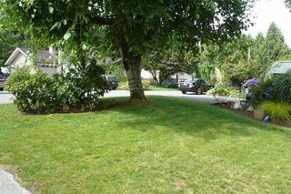 Photo 16: 33439 RAINBOW Avenue in Abbotsford: Central Abbotsford House for sale : MLS®# F1418145