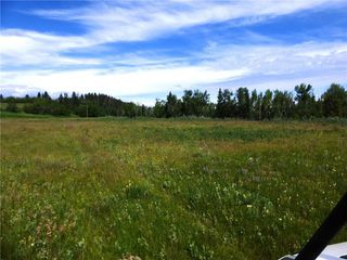 Photo 10: On 370 Ave West at 144 St West: Rural Foothills County Land for sale : MLS®# C4300140