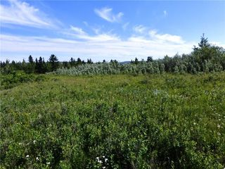 Photo 5: On 370 Ave West at 144 St West: Rural Foothills County Land for sale : MLS®# C4300140
