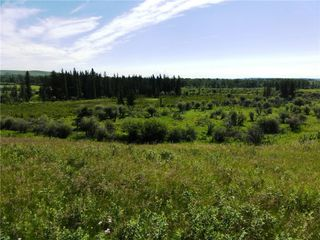 Photo 22: On 370 Ave West at 144 St West: Rural Foothills County Land for sale : MLS®# C4300140