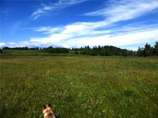 Photo 9: On 370 Ave West at 144 St West: Rural Foothills County Land for sale : MLS®# C4300140