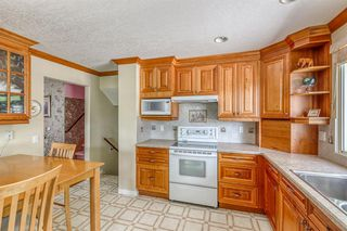 Photo 11: 10716 MAPLESHIRE Crescent SE in Calgary: Maple Ridge Detached for sale : MLS®# C4301263