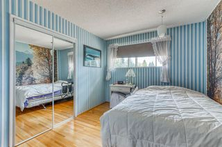 Photo 27: 10716 MAPLESHIRE Crescent SE in Calgary: Maple Ridge Detached for sale : MLS®# C4301263