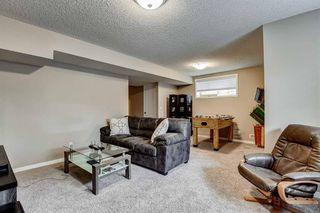 Photo 29: 113 BRIGHTONCREST Grove SE in Calgary: New Brighton Semi Detached for sale : MLS®# A1017017