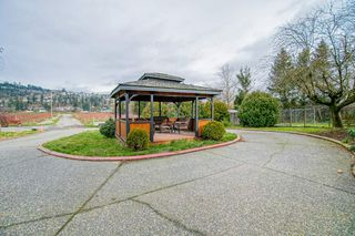 Photo 29: 35826 SOUTH PARALLEL Road in Abbotsford: Sumas Prairie House for sale : MLS®# R2520155