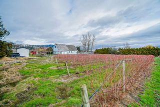 Photo 30: 35826 SOUTH PARALLEL Road in Abbotsford: Sumas Prairie House for sale : MLS®# R2520155
