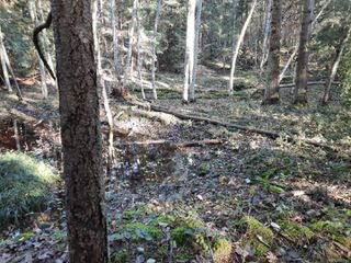 Photo 4: Lot 91 SOCKEYE Dr in : Isl Mudge Island Land for sale (Islands)  : MLS®# 861195