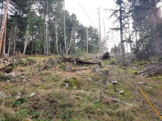 Photo 7: Lot 91 SOCKEYE Dr in : Isl Mudge Island Land for sale (Islands)  : MLS®# 861195