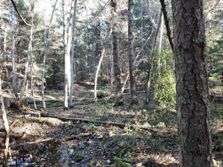 Photo 5: Lot 91 SOCKEYE Dr in : Isl Mudge Island Land for sale (Islands)  : MLS®# 861195