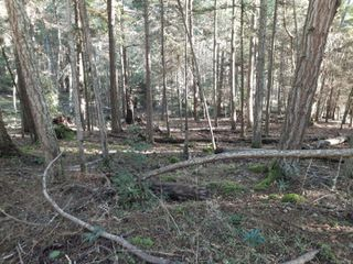 Photo 2: Lot 91 SOCKEYE Dr in : Isl Mudge Island Land for sale (Islands)  : MLS®# 861195