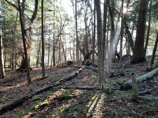 Photo 3: Lot 91 SOCKEYE Dr in : Isl Mudge Island Land for sale (Islands)  : MLS®# 861195