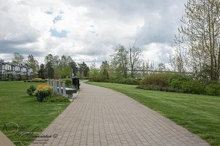 Photo 20: 19452 Fraser Way Pitt Meadows V946067