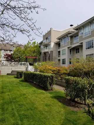 Photo 15: 206 3625 WINDCREST DRIVE in North Vancouver: Roche Point Condo for sale : MLS®# R2340462
