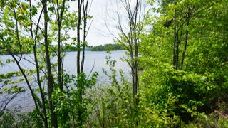 Photo 6: Algonquin Park in Township of Stratton, District of Nippissing: Achray Station Recreational for sale (Algonquin Park)  : MLS®# 1156653