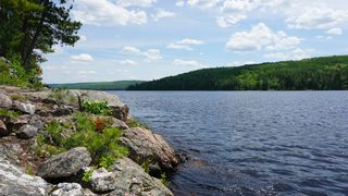 Photo 13: Algonquin Park in Township of Stratton, District of Nippissing: Achray Station Recreational for sale (Algonquin Park)  : MLS®# 1156653