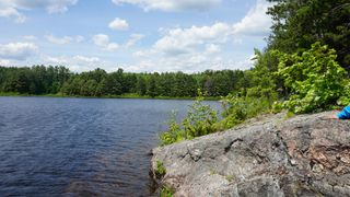 Photo 11: Algonquin Park in Township of Stratton, District of Nippissing: Achray Station Recreational for sale (Algonquin Park)  : MLS®# 1156653