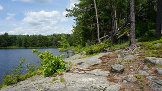 Photo 9: Algonquin Park in Township of Stratton, District of Nippissing: Achray Station Recreational for sale (Algonquin Park)  : MLS®# 1156653