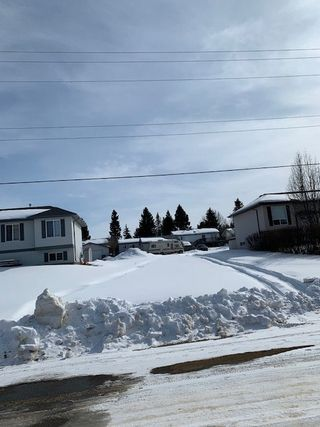 Photo 4: 29 Spruce Meadow Lane: Bon Accord Vacant Lot for sale : MLS®# E4205282