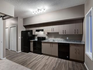 Photo 13: 1611 4641 128 Avenue NE in Calgary: Skyview Ranch Apartment for sale : MLS®# A1029088