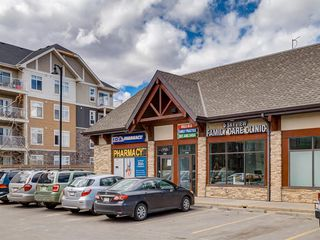 Photo 43: 1611 4641 128 Avenue NE in Calgary: Skyview Ranch Apartment for sale : MLS®# A1029088