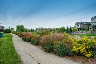 Photo 36: 254 BAYSIDE Point SW: Airdrie Detached for sale : MLS®# A1037560