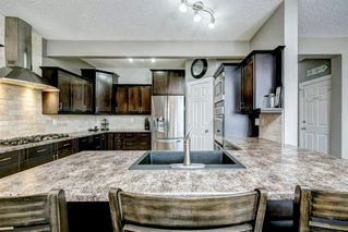 Photo 12: 254 BAYSIDE Point SW: Airdrie Detached for sale : MLS®# A1037560