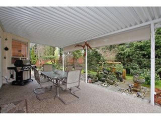 Photo 19: 13568 N 60A Avenue in Surrey: Panorama Ridge House for sale : MLS®# F1432245
