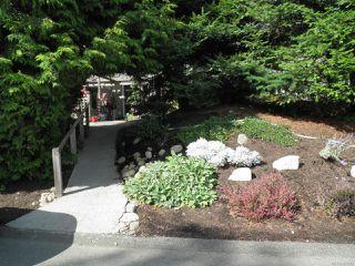 Photo 13: 102A 2250 Manor Pl in COMOX: CV Comox (Town of) Condo for sale (Comox Valley)  : MLS®# 823177